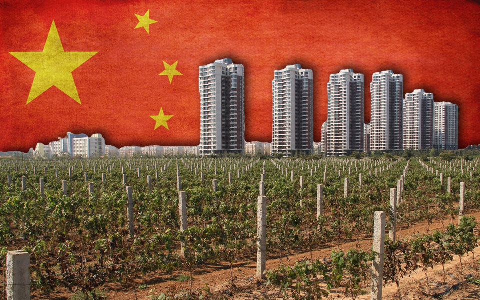 Chinese Wine – A Red Obsession